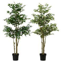 IKEA Fejka Tanaman Tiruan Dalam Pot, berbagai Ficus Benjamina Exotica - Dekoruma.com