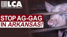Petition · Stop Dangerous Arkansas Ag Gag Bill HB 1665! · Change.org