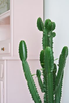 Aujourd'hui, on visite un intérieur vintage et coloré avec des plantes, du rotin, du pastel...un appartement plein de charme.