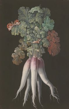 Barbara Regina Dietzsch - 18th c. - via Sotheby's