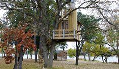 Casa sugli alberi per bambini n.24