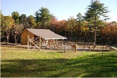LOVE this place!!  Pine Hill Alpaca Farm  Sterling, CT