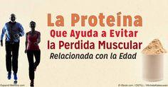 La proteína de suero de alta calidad contiene leucina, un aminoácido que promueve la construcción de músculo y ayuda a prevenir la pérdida muscular.