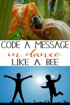 Code a message in dance just like a Bee Dance Activities For Kids, Camping Activites For Kids, Kids Dance Classes, Bee Activities, Forest School Activities, Communication Activities, Communication Methods, Movement Activities, Music Activities