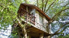 Treehouse for rent in Burlingame, CA