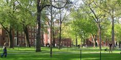 The 16 Most Beautiful And Iconic American College Quads  (Harvard Yard)