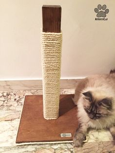 Walnut cat scratching post made of wood. Made in Italy