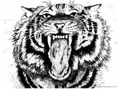 auburn tigers college football coloring pages 01png 800600