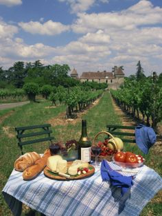 Hahnemuhle PHOTO RAG Fine Art Paper (other products available) - Table set with a picnic lunch in a vineyard in Aquitaine, France, Europe - Image supplied by WorldInPrint - Fine Art Print on Paper made in the UK Nature Aesthetic, Summer Aesthetic, Travel Aesthetic, Aesthetic Food, Aesthetic Outfit, Aesthetic Vintage, Aesthetic Girl, Couple Aesthetic, Aesthetic Bedroom