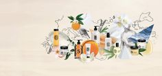 Diptyque Paris   Official Website Art Of Living, Luxury Beauty, Art World, Scented Candles, Fragrance, Holiday, Collages, Paris, Website