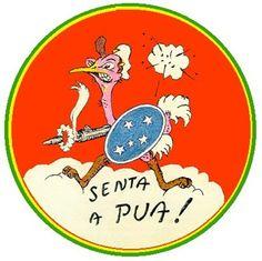 Symbol of Brazilian Air Force, II War