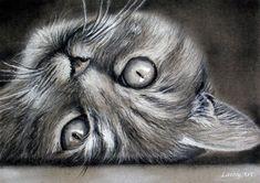 Ik weet ook iedereen dat katten en honden (en andere geliefde wezens!) meer dan huisdieren in ons hart zijn. Ze zijn onze harige vrienden en een zeer essentieel onderdeel van onze gezinnen. Een aangepaste portret is de perfecte manier om te eren hun onvoorwaardelijke liefde en onze speciale vrienden dicht bij ons hart voor altijd houden.   Deze aanbieding is voor een 8 inch met 10 inch krijt en houtskool portret van een huisdier met een eenvoudige achtergrond. Ik werk vanuit uw favoriete…