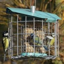 Nuttery Hexihaus Compact Suet and Suet Cake Feeder - JacobsOutdoor