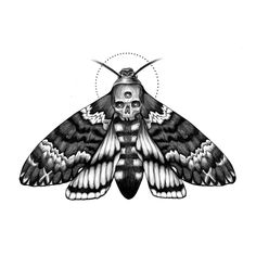 Death's-Head Hawkmoth 💀💀💀 Such badass moths but they make the cutest squeaky noise 💗 . Blue Tattoo, Black Ink Tattoos, Body Art Tattoos, Sleeve Tattoos, Moth Tattoo Design, Clock Tattoo Design, Tattoo Designs, Death Head Moth Tattoo, Moth Drawing