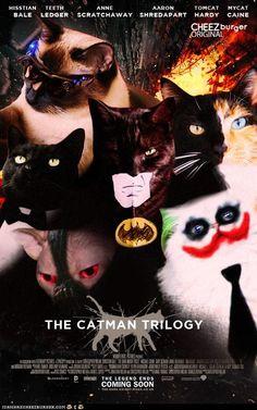 hee hee hee. Love the Harvey 2-Face cat tht looks just like a mirror image of Fanny!