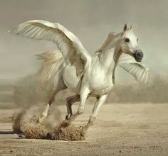 (Ancient Greek: Πήγασος, Pégasos, Latin Pegasus) one of the best known mythological creatures in Greek mythology. He is a winged divine horse, usually depicted as white in colour. He was sired by Poseidon, in his role as horse-god, and foaled by the Gorgon Medusa. He was the brother of Chrysaor, born at a single birthing when his mother was decapitated by Perseus. Greco-Roman poets write about his ascent to heaven after his birth and his obeisance to Zeus, king of the gods.