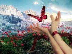 """"""" Por que  sonhar é o meu constante estado de espírito... e assim continuo sonhando...!""""                                                                                                        Deise Mello  - - - http://www.kboing.com.br/israel-kamakawiwoole/1-42..."""