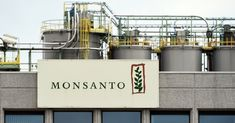 Monsanto had sued the nation& leading agricultural state, saying California officials illegally based their decision for carrying the warnings on an international health organization based in France. Bayer Ag, International Health, Health Organizations, Food Test, Health And Nutrition, Cancer, News, Wednesday Morning, Antwerp