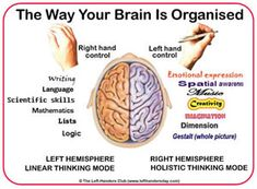 Brain organisation - left and right hemispheres and hand control - The effects of forcing a left-hander to write right-handed