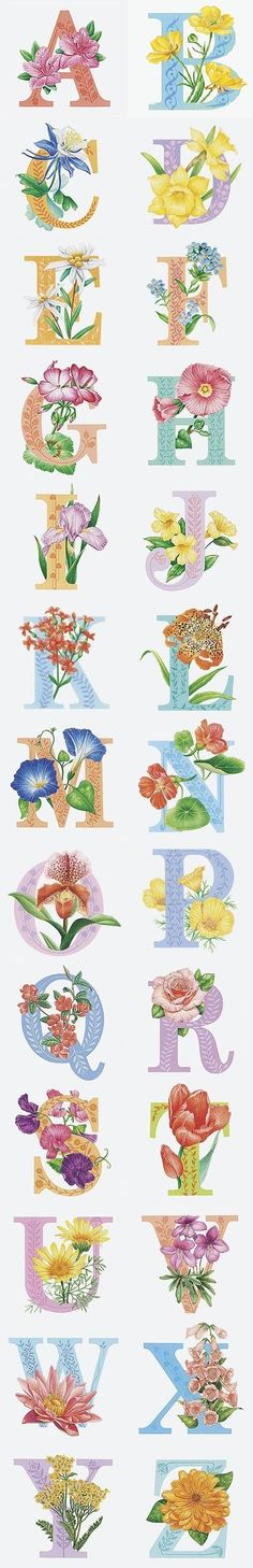 Papirolas Coloridas Embroidery Art, Embroidery Patterns, Machine Embroidery, Lettering Design, Sign Design, Creative Lettering, Alphabet Design, Alphabet And Numbers, Calligraphy Fonts