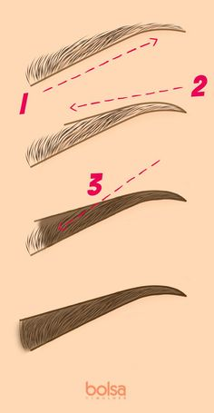 How to pluck your eyebrows in 4 easy steps Makeup Inspo, Makeup Inspiration, Makeup Tips, Eyebrows, Eyeliner, How To Become Beautiful, Eyebrow Makeup, Hair Makeup, Make Up Tricks