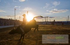 Cowtown Rodeo, Woodstown NJ.  The only other weekly PRCA sanctioned rodeo is in Texas.