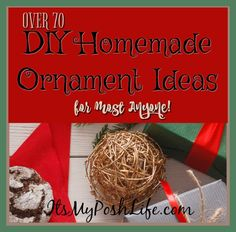 OVER 70 DIY Homemade Ornament Ideas for most Anyone!