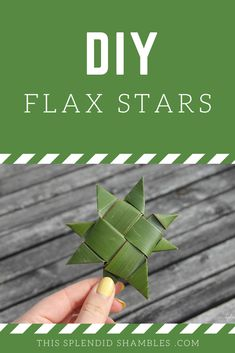 How to make harakeke whetū (flax stars) on This Splendid Shambles. Really easy, kid friendly, craft you can DIY in your own backyard. Flax Weaving, Basket Weaving, Summer Crafts, Crafts For Kids, Maori Words, New Zealand Flax, Maori Symbols, Flax Flowers, Weaving For Kids