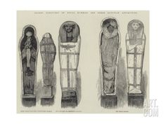 Recent Discovery of Royal Mummies and Other Egyptian Antiquities Giclee Print at Art.com