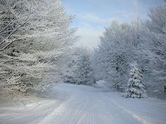 transylvanialand:  DSCN0810.JPG by Philippe Sainte-Laudy on Flickr.