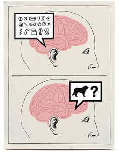 Cracking the Brain's Codes! How does the brain speak to itself. Christof Koch and Gary Marcus Explain the Codes Used by the Brain.Illustration by Matt Dorfman.