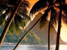 St. Lucia - Home