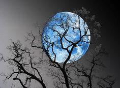 December Blue Moon -