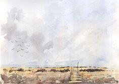 Scholes Moor