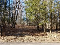 Land Real Estate for Sale in Sterling PA at Twin Rocks Rd $22,500If you are looking for ease of access location to build this is it! Beautiful perc app...