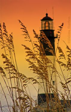 Tybee Island - could this be the lighthouse that a couple I know got locked in? ...