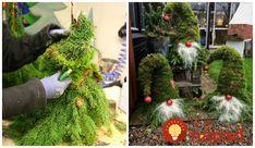 Krásny nápad na tohtoročné Vianoce. Neváhajte a vytvorte si utešeného trpaslíka pred vaše vchodové dvere. Na ozdobenie vám stačí obyčajná stará čiapka, červená vianočná guľka a trocha vaty. Tento utešený nápad vás budete tešiť ešte Holy Family, Gnomes, Ladder Decor, Diy And Crafts, Art Projects, Christmas Wreaths, Holiday Decor, Plants, Home Decor