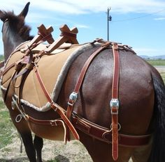 SoMoMule-Pack Saddle-Pack Saddles-Pack Saddle Horses-Pack Saddle Mule