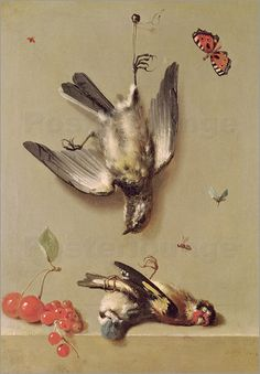 Jean-Baptiste Oudry - Still Life of Dead Birds and Cherries