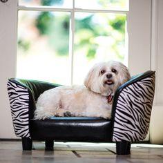 Fab.com   Flaunt-Worthy Designer Dog Beds