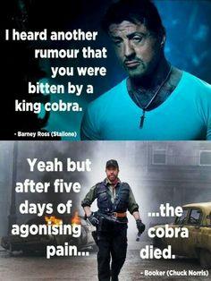 Chuck Norris joke!