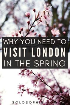 Here's why you need to visit London in the spring: reasons to go to the UK capital city includes the London cherry blossoms, fewer crowds, great weather, and lots of London activities! London Activities, Parks, Uk Capital, Highgate Cemetery, Spring Weather, Westminster Abbey, Kew Gardens, Best Location, Buckingham Palace