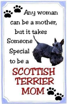 Proud to be a the mom of three gorgeous Scottie girls...  awwh my Isabella, Pearl & Hazel, you mean the world to me.  <3