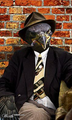"""""""Gangster"""" by daniloco - Worth1000 - Anthropomorphic bird"""