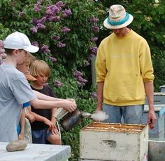 Sunnyside Market Kensington Village Calgary  Some young people learning about bee keeping