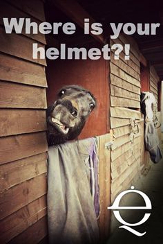A 'helmet always' policy is good for so many reasons. If it doesn't weigh on your conscience knowing someone could really hurt themselves, maybe consider that they could sue? (◕‿◕✿)