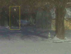 In 2009 Patrick Heil snapped this picture of his backyard. In the upper-left hand corner appears to be a dark presence staring straight back at him. If this figure wasn't creepy enough, Patrick claims there was no-one there at the time he took the picture.