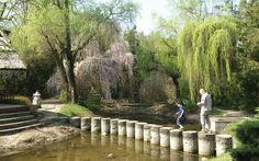 Arborétum, Mlyňany Trips, Flora, Bridges, Viajes, Traveling, Plants, Travel