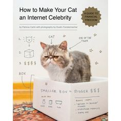 Livro - How to Make Your Cat an Internet Celebrity: A Guide to Financial Freedom