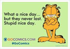 Garfield on #GoComics   #comics #funnies #ecards #cats